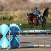 Steinwedell-Carvin Wins $33,000 Desert Classic on New Horse Lapsus