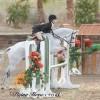 USPC Fuels Pony Power at HITS