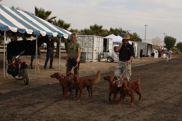 Daily Dog - HITS Desert Circuit, DC I