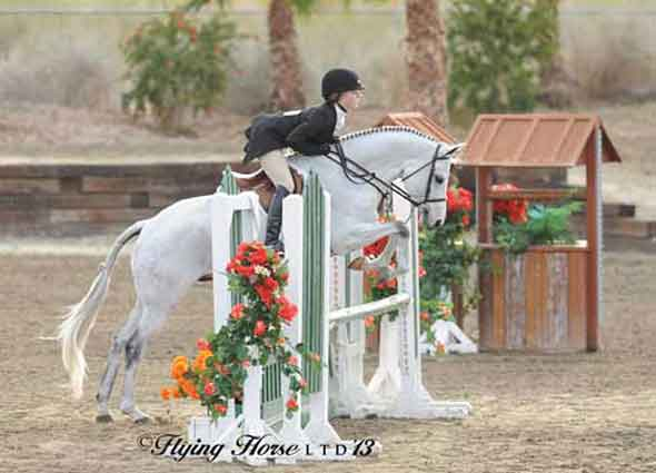 Lexie Looker and her grey pony Center Field float over a hunter jump.