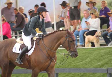 Saer Coulter and her new horse Don VHP Z wak off course